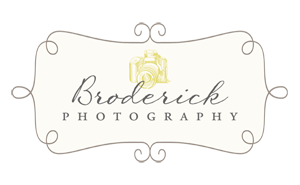 Broderick Photography | Chicago Newborn Photographer | Babies | Children | Families | Seniors | Faryography | Headshots | Frankfort | Bourbonnais | Manteno | New Lenox | Manhattan | Mokena logo